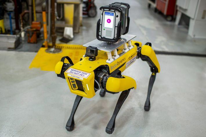 A Ford robotkutyái